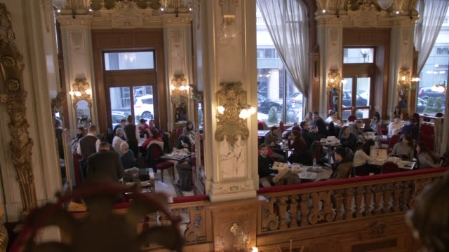 view of ornate interior of new york cafe, budapest, hungary, europe - traditionally hungarian stock videos & royalty-free footage