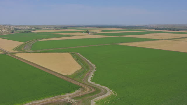 vidéos et rushes de ws aerial view of over green and tan patchwork farmland at williston basin / north dakota, united states - patchwork landscape