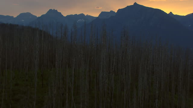 WS AERIAL TU View of over trees to Lake McDonald and mountains during sunrise / Montana, United States