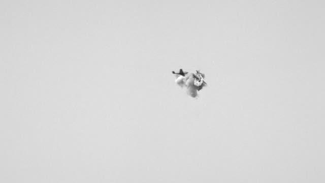 WS LA View of P-40 passes Zero in head on attack