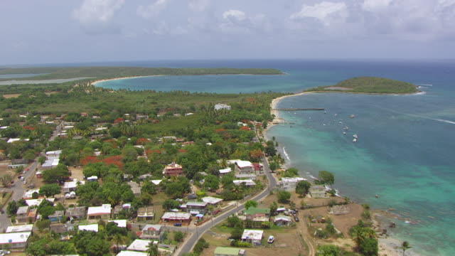 ws aerial pov view of palm tree beach at esperanza / vieques, puerto rico, united states - puerto rico stock videos and b-roll footage