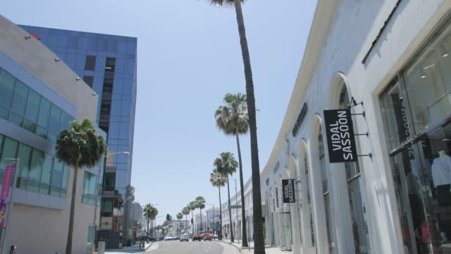 view of palm trees lining santa monica blvd, beverly hills, los angeles, la, california, united states of america, north america - santa monica blvd stock videos & royalty-free footage