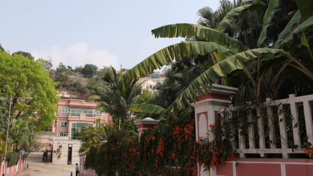 view of palm trees waving in the wind behind colourful short walls of houses in colonial style - macao stock videos & royalty-free footage