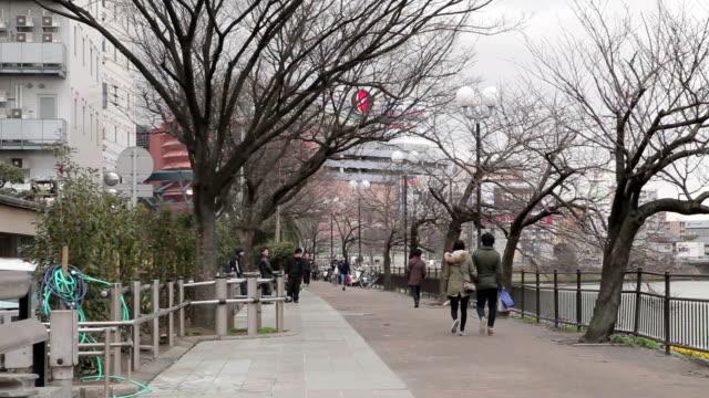 view of park in fukuoka, japan - satoyama scenery stock videos & royalty-free footage