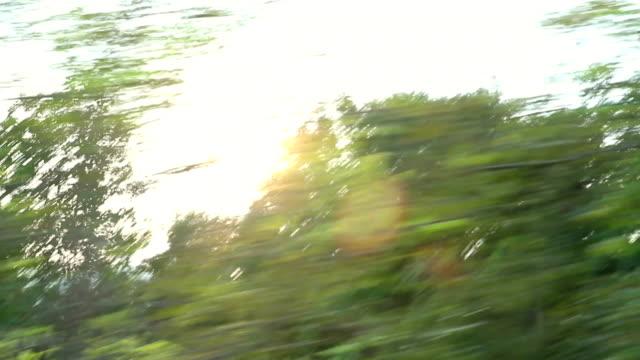 HD: Blick auf die Landschaft aus einem bus übergeben Fenster