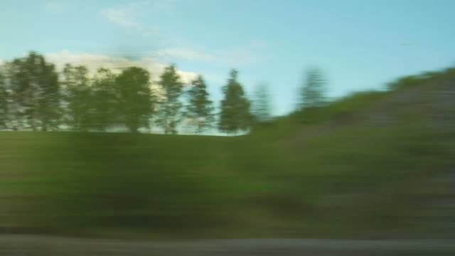 View of passing landscape from a train window.