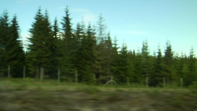 view of passing landscape from a train window. - moving past stock videos & royalty-free footage