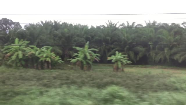 view of passing landscape trough a moving train window - moving past stock videos & royalty-free footage
