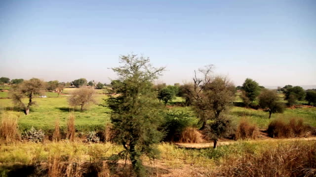 view of passing landscape while traveling by train - train point of view stock videos & royalty-free footage