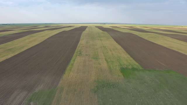 vidéos et rushes de ws aerial tu view of pattern farm fields / slater, wyoming, united states - patchwork landscape