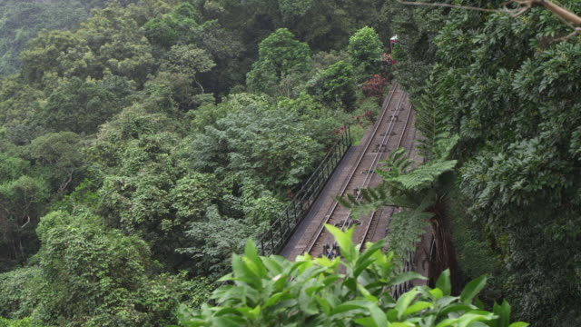 ws ha ts view of peak tram in forest / hong kong, china - straßenbahnstrecke stock-videos und b-roll-filmmaterial