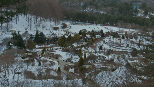 ws t/l zi view of people at achimgoyo arboretum on christmas holiday / gapyeong, kyonggi-do province, south korea - kyonggi do province stock videos and b-roll footage