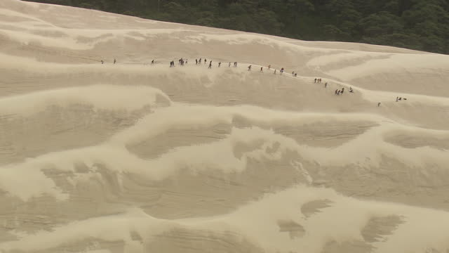 ws aerial view of people climbing dune du pilat / aquitaine, france - dune of pilat stock videos and b-roll footage