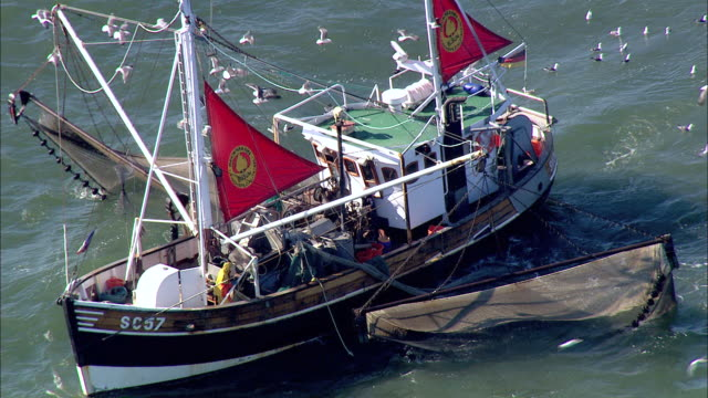 aerial ms zi zo view of people fishing through  fishnet  / cuxhaven, schleswig-holstein, germany - fishnet stock videos and b-roll footage