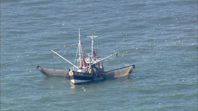 aerial ms zi view of people fishing through  fishnet  / cuxhaven, schleswig-holstein, germany - fishnet stock videos and b-roll footage