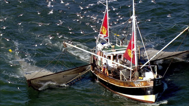 AERIAL MS View of people fishing through  fishnet  / Cuxhaven, Schleswig-Holstein, Germany
