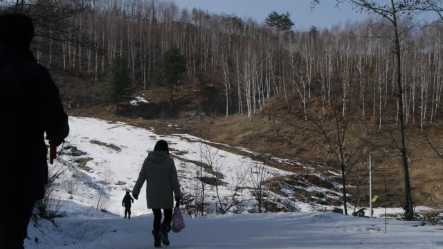 View of people roaming around Forest of Birch Tree in winter