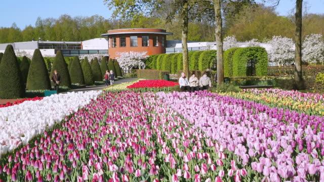 ws view of people roaming at oranje nassau pavillon at keukenhof gardens / lisse, south holland, netherlands - oranje stock videos & royalty-free footage