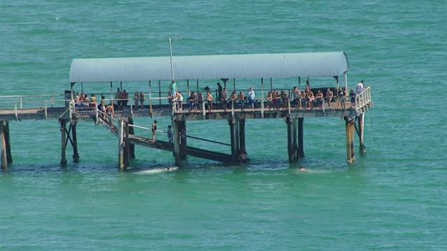 ws aerial view of people standing on jetty / adelaide, australia - south australia bildbanksvideor och videomaterial från bakom kulisserna