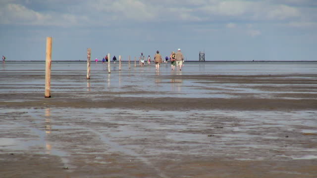 WS View of people walking down in sea ebb tide at wadden sea, North Sea North Frisia / Westerhever, Schleswig Holstein, Germany