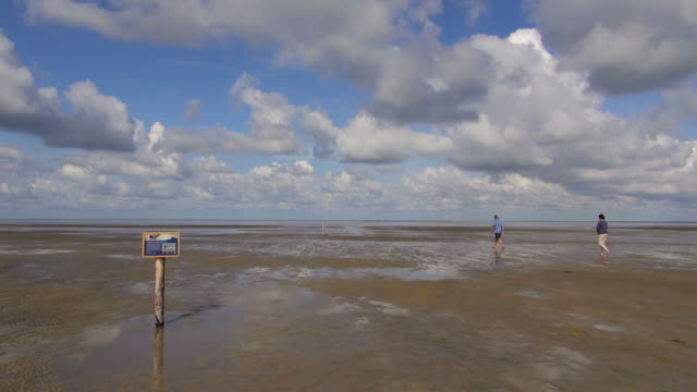 ws view of people walking on sea ebb tide at wadden sea, north sea north frisia / westerhever, schleswig holstein, germany - nordfriesische inseln stock-videos und b-roll-filmmaterial
