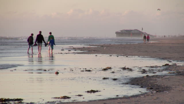 ws view of people walking sea coast at sunset, north sea north frisia, / st. peter ording, schleswig holstein, germany - north sea stock videos & royalty-free footage