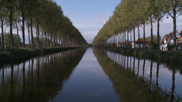 vidéos et rushes de ws view of perspective tree on damme canal / damme, flanders, belgium - canal eau vive