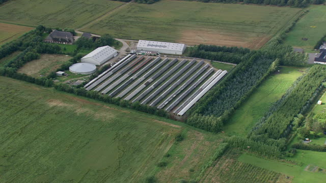 Ws Aerial Zo View Of Pig Of Chicken Intensive Farming