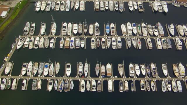 ws aerial view of pleasure boats paring in elliott bay marina / seattle, washington, united states - elliott bay stock videos & royalty-free footage