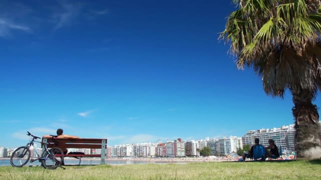 view of pocitos beach from kibon, montevideo, uruguay, 2015 - uruguay stock-videos und b-roll-filmmaterial