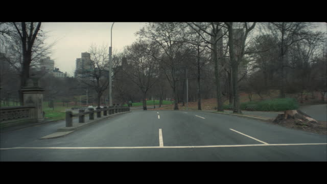 ws view of police cars and small station wagon past through central park / new york city, usa  - 1976年点の映像素材/bロール