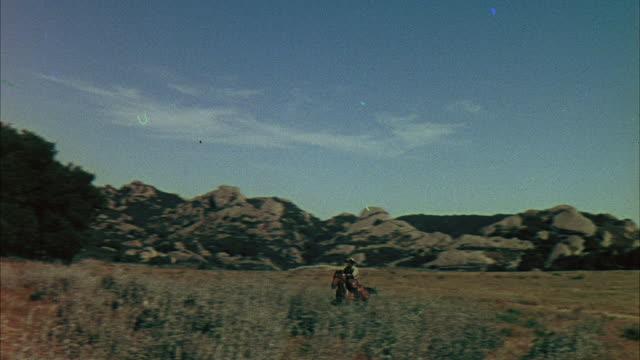 ws pov view of pony exprssing rider / united  states - arbetsdjur bildbanksvideor och videomaterial från bakom kulisserna