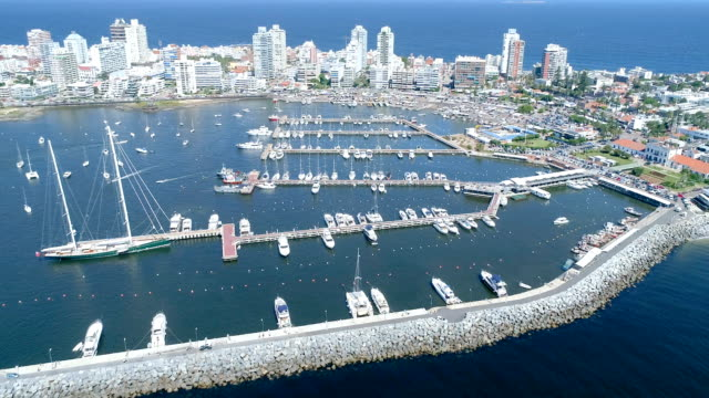view of port of punta del este, aerial view, drone point of view, uruguay - uruguay stock-videos und b-roll-filmmaterial