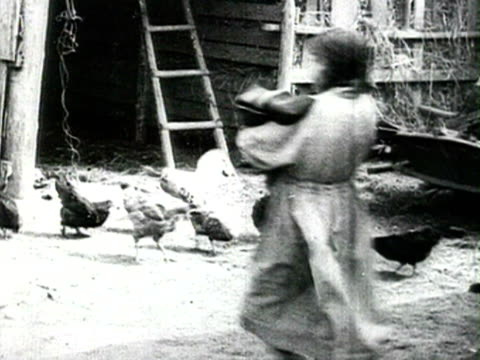ms view of poultry farm audio/ russia - 1925年点の映像素材/bロール