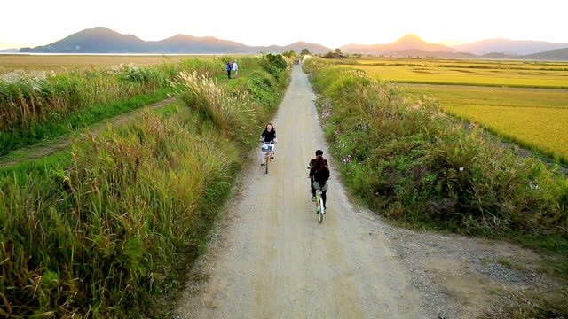 View of promenade and field of reeds in Suncheonman Bay(Natural Landmark,Ecological Park)