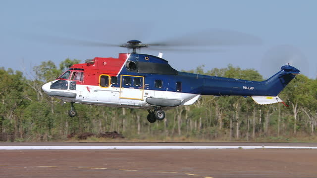 ws ts view of puma helicopter landing in remote location / darwin, australia - helicopter stock videos and b-roll footage