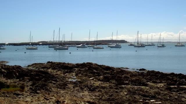 view of punta del este's harbor and gorriti island, summer, outdoors, uruguay - sedative stock videos & royalty-free footage