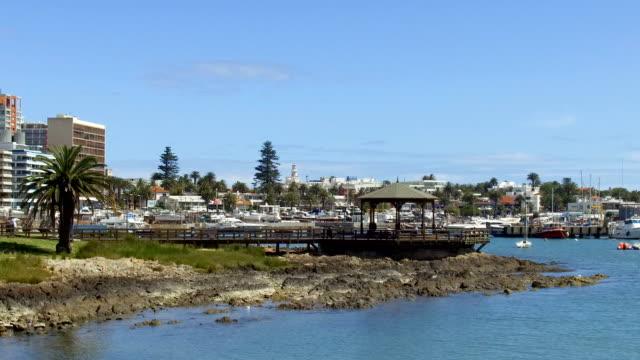 view of punta del este's harbor, uruguay - sedative stock videos & royalty-free footage
