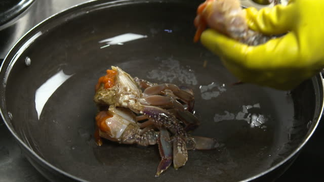 view of putting ganjang gejang(soy sauce marinated raw crab) on the pot - marinated stock videos and b-roll footage