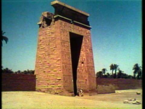 1953 ws ms cu view of pyramids and the sphinx of giza, camels walk along the desert / egypt / audio - arbeitstier stock-videos und b-roll-filmmaterial
