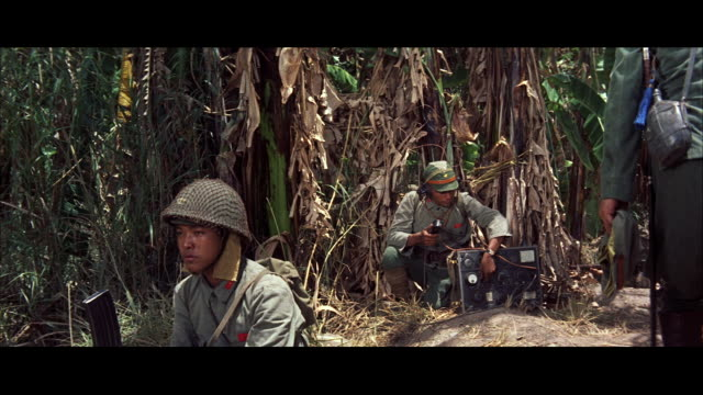 cu view of radio telephone oprator in jungle / tokyo, japan - 銃撃事件点の映像素材/bロール