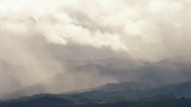 ws view of rain falls on hill forests of oregon, dramatic white clouds pass overhead / cornelius, oregon, united states  - nebel stock-videos und b-roll-filmmaterial