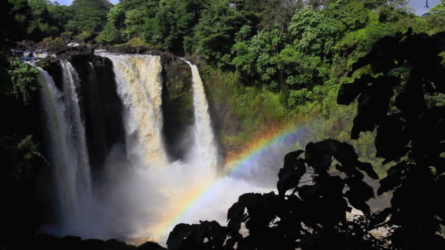 ws view of rainbow falls hilo with tropical rainforest / hilo, hawaii, usa - hilo stock videos & royalty-free footage