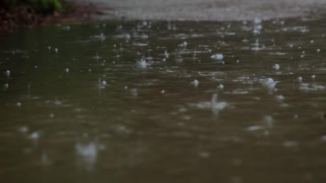 cu view of raindrops / copenhagen, sjaelland, denmark - raindrop stock videos & royalty-free footage