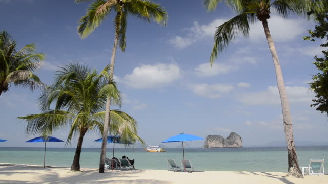 WS View of Relaxation under palm trees on sandy beach / Ko Hai, Krabi, Thailand