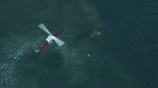 stockvideo's en b-roll-footage met ws aerial view of rescue helicopter hovering above man in sea / cape town, western cape, south africa - red sea