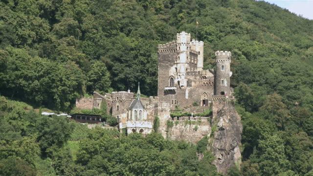 ws view of rheinstein castle  / rhine-valley, rhineland-palatinate, germany - plant attribute stock videos and b-roll footage