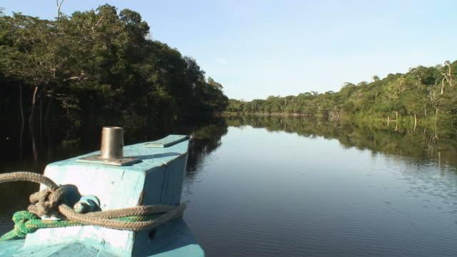 stockvideo's en b-roll-footage met ws pov view of rio negro boat moving on river / rio negro, amazonas, brasil - color negro