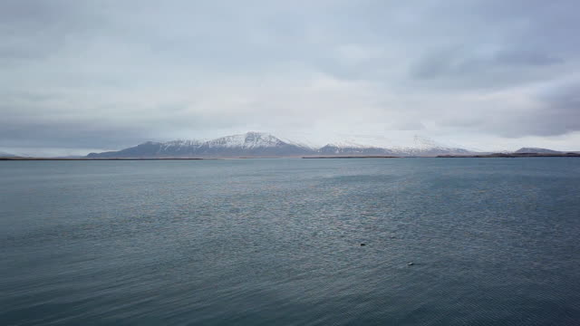 ws view of ripples move and birds swim on sea in front of snow mountain  / reykjavik city, iceland - 大西洋点の映像素材/bロール