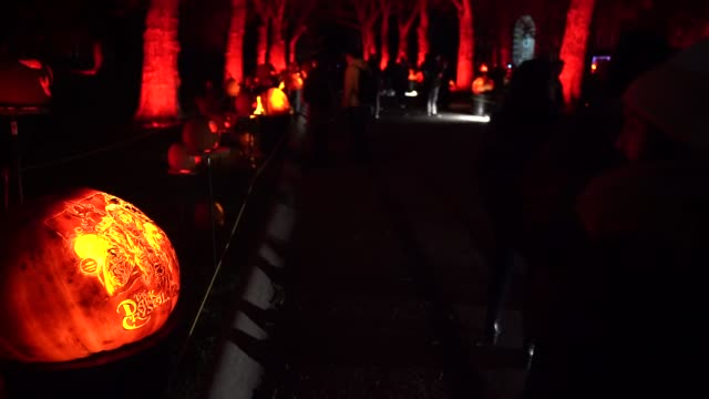 vídeos de stock, filmes e b-roll de a view of 'rise of the jack o'lanterns' spectacle which features more than 5000 handcarved illuminated pumpkins created by professional artists... - lanterna de halloween